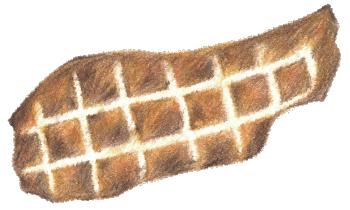 イノシシ 干し肉 50g